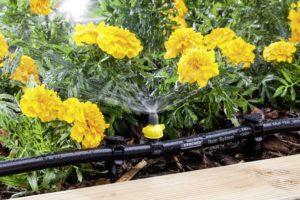 rain_system_spray_nozzle_180_app_2-75664-150dpi