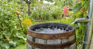 děšťová voda v sudu